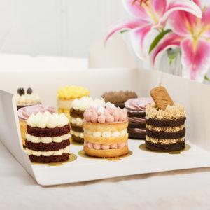 Caja de 9 pasteles favoritos