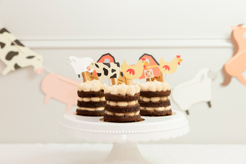 Pasteles chocolate y Galleta decorados